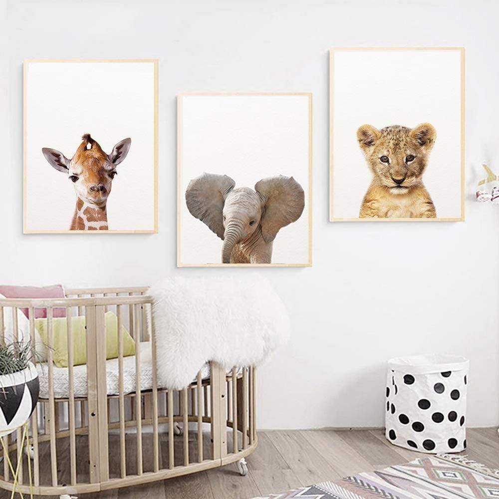 Comprar cuadros animales