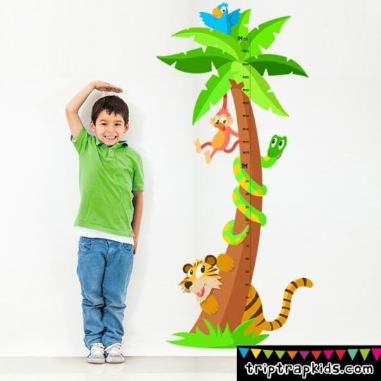 medidor-selva